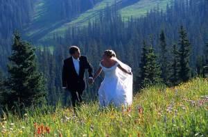 //www.lovetripper.com/news/uploaded_images/wildflowers-mountain-760804.jpg
